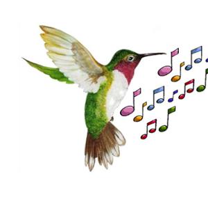 colibri-note-3